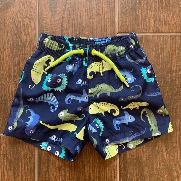 37cc0bf2e7991 Gymboree Swim | 36m Trunks Iguana Gecko Lizard Wear | Poshmark